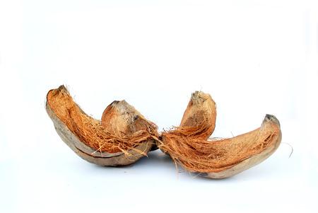 coconut shell's hair,coconut peel white background. 免版税图像