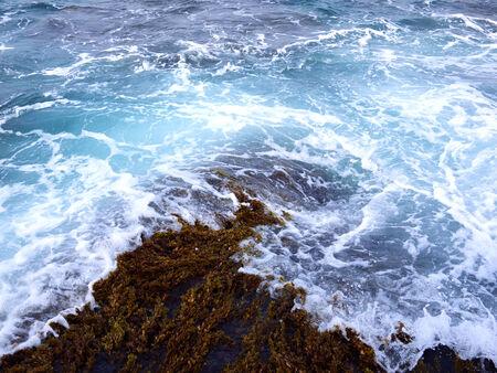 blown: Seawater blown ashore