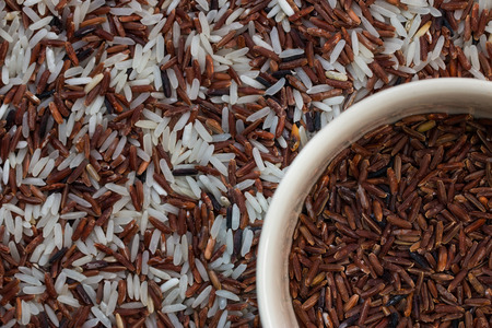 arroz blanco: El arroz integral en la taza de la mezcla de arroces: blanco (jazm�n) de arroz, arroz integral y riceberry Foto de archivo