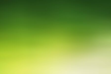 The abstract green color background Stock Photo