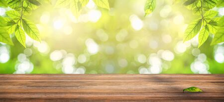 wooden table with natural view of green leaves in garden, ray of sunlight though tree leaves in summer time