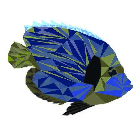 Blue fish with yellow zebra pattern.