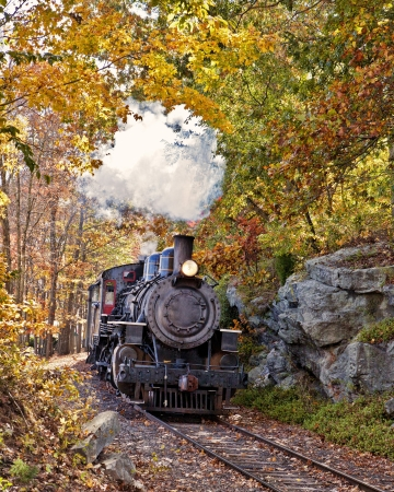 steam locomotives:  Vertical orientation  of Essex Steam Train coming thru a rocky pass with a fall foliage backdrop