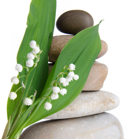 muguet: Lily-of-the-valley in front of a pebbles stack, isolated on white