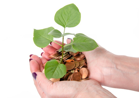 Growth concept with human hands holding a green small plant planted in coins, isolated on white photo