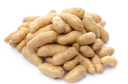 Heap of new rattes potatoes, isolated on white photo