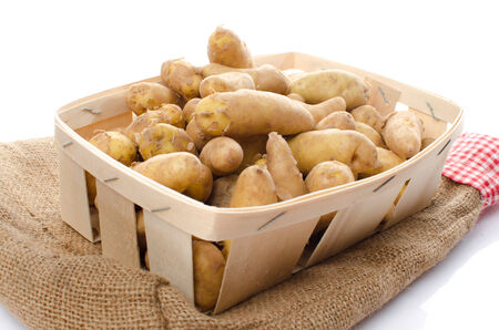 New rattes potatoes in a basket, isolated on white photo