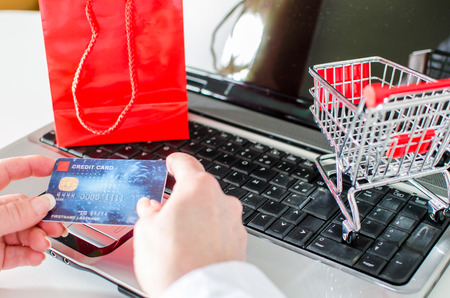Woman holding a credit card over a laptop before buying online Stok Fotoğraf