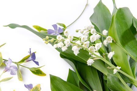 lily of the valley: Lily of the valley, isolated on white