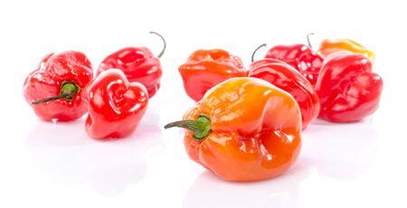 habanero: Fresh habanero peppers, isolated on white
