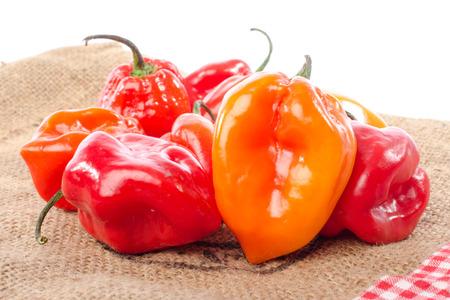 habanero: Fresh habanero peppers on burlap, isolated on white Stock Photo