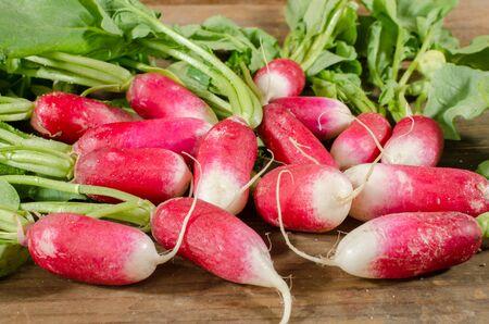 radishes: Fresh radishes closeup Stock Photo