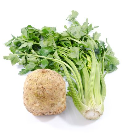 celery root: Celery root and green celery, isolated on white Stock Photo