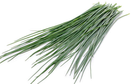 chives: Fresh chives, isolated on white