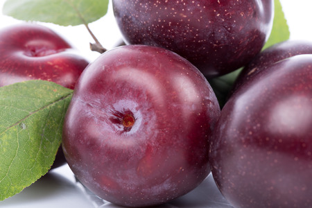 purple leaf plum: Ripe cherry plums, closeup