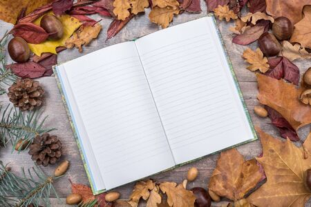 bordered: Notebook on wooden background bordered with leaves