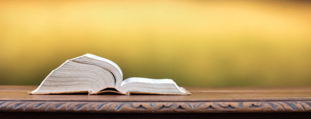 Open book on yellow blurred background