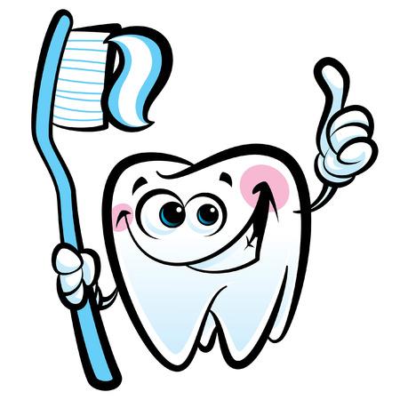 dientes caricatura: Simpático personaje de dibujos animados del diente sano que hace un gesto del pulgar hacia arriba mientras sonreía feliz y la celebración de un cepillo de dientes dental con pasta de dientes Vectores