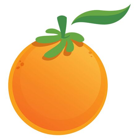 Vector illustration image of a cartoon sweet orange with green leaf