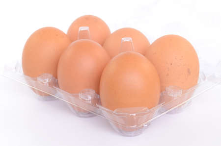 Eggs on a plastic stand on a white background photo