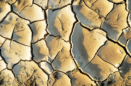 Background of dry cracked mud photo