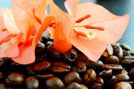 Coffee beans and beautiful flower
