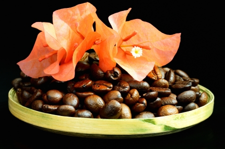 Coffee beans and beautiful flower on black background