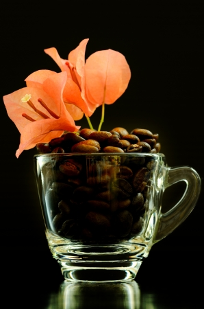 Coffee beans and beautiful flower in a cup on black background