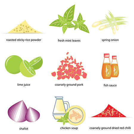 Ingredients of Ground pork salad  Thai food  Vector
