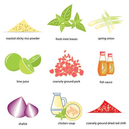 Ingredients of Ground pork salad  Thai food  Vector