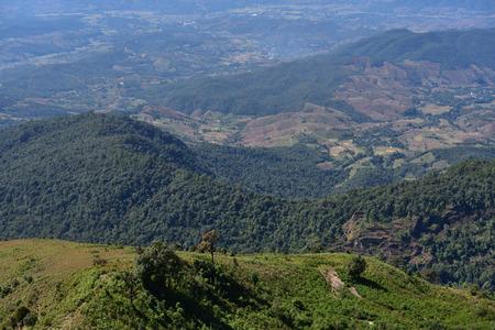 Kew Mae Pan nature trail in Chiangmai,Thailand