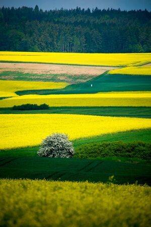 a rural lansdscape near Coburg in Germany photo