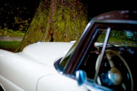 postwar: A part of Post-War classic car in front of forest