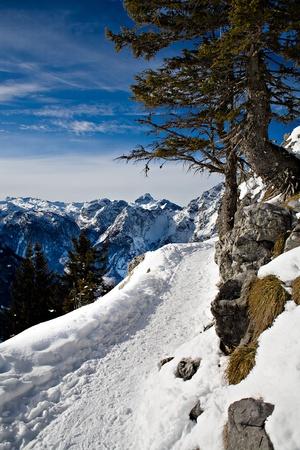 Mountain area in the Alps near Berchtesgaden photo