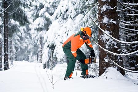 leñador: un leñador en el trabajo en el bosque de invierno Foto de archivo