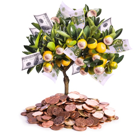 financial plan: a symbolic picture for financial success and money savings