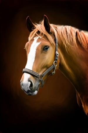 paardenhoofd: schilderij Portret van een paard Stockfoto