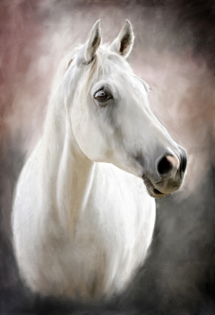 a photograph stylized as painting portrait of a white horse photo