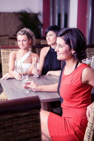 group of young women in the bar Stock Photo - 16441828