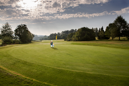 greens: Parts of a golf course in a summer morning