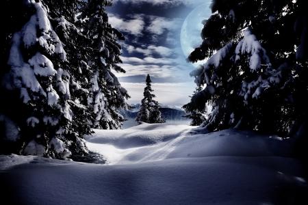 h�tte schnee: Winterwald bei Nacht in den Alpen in der N�he von Kufstein in �sterreich, Europa.