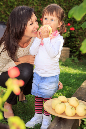 mother and daughter collecting apples in the garden photo