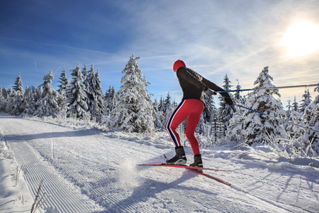 crosscountry: A man cross-country skiing on the forest trail
