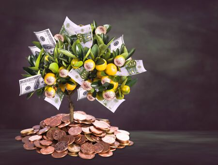 a symbolic picture for financial success and money savings photo