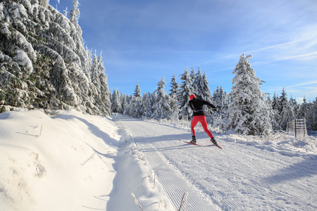 A man cross-country skiing on the forest trail