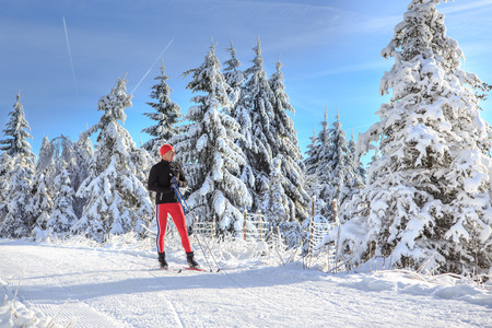 recreational area: A man cross-country skiing on the forest trail