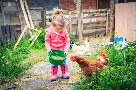 farms: little girl feeding chickens in front of farm