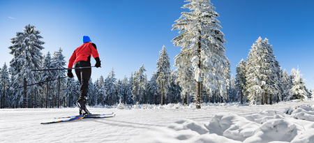 A man cross-country skiing on the trail in wintry forest