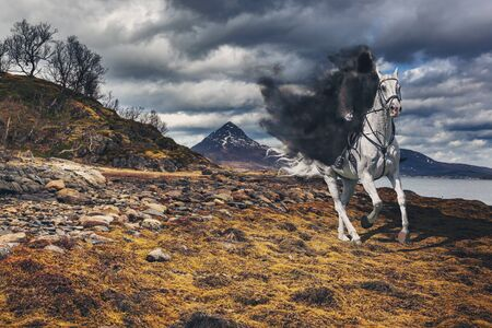 The Grim Reaper on the horse in the mystical mountainous landscape