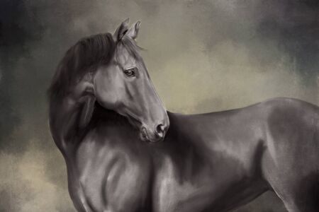 Digital painted portrait of a black horse Imagens
